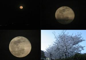 0329-worm-moon